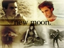new_moon140909