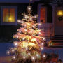 christmas_02_060110.jpg