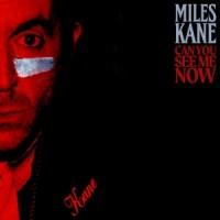 Майлз Кейн решил порадовать своих поклонников неожиданным релизом. Исполнитель опубликовал клип на новый сингл, озаглавленный Can You See Me Now
